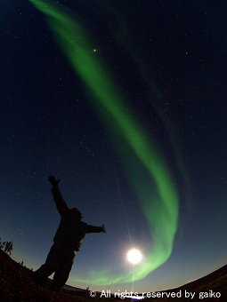 Northen lights1